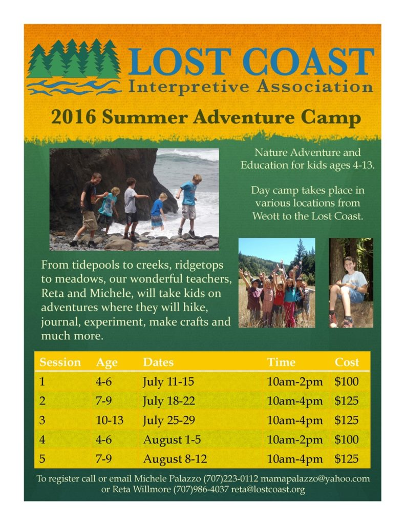 2016 Summer Adventure Camp Poster-page-001